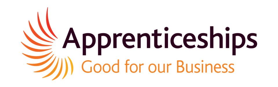 Thinking of taking on an Apprentice?